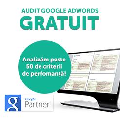 Audit Google Adwords Gratuit
